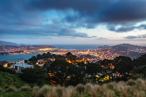 Entenda o clima de Wellington