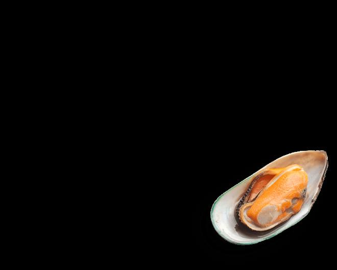 Marisco produzido e exportado pela Nova Zelândia