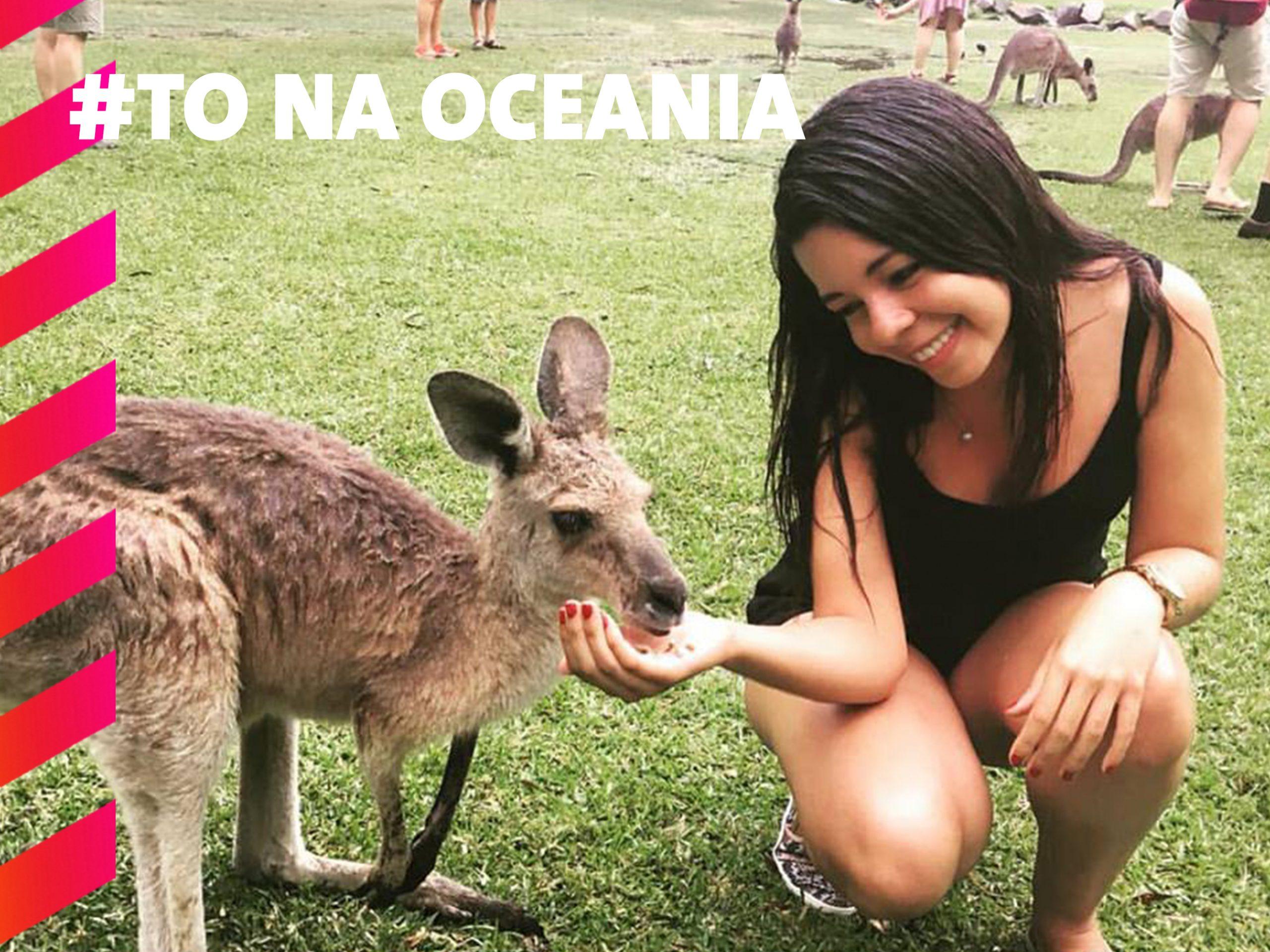 Meu primeiro contato com um Canguru, no Zoologico de Gold Coast